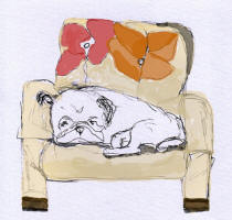 Sweet Dreams - Napping Pug Fabric