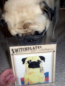 Salinger loves his switchplate!