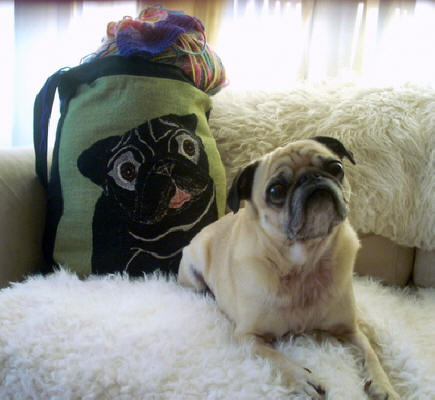 Tweedles loves her tote bag too!  She carries yarn in it everywhere she and her mom go! Photo courtesy of Georgie W., OR