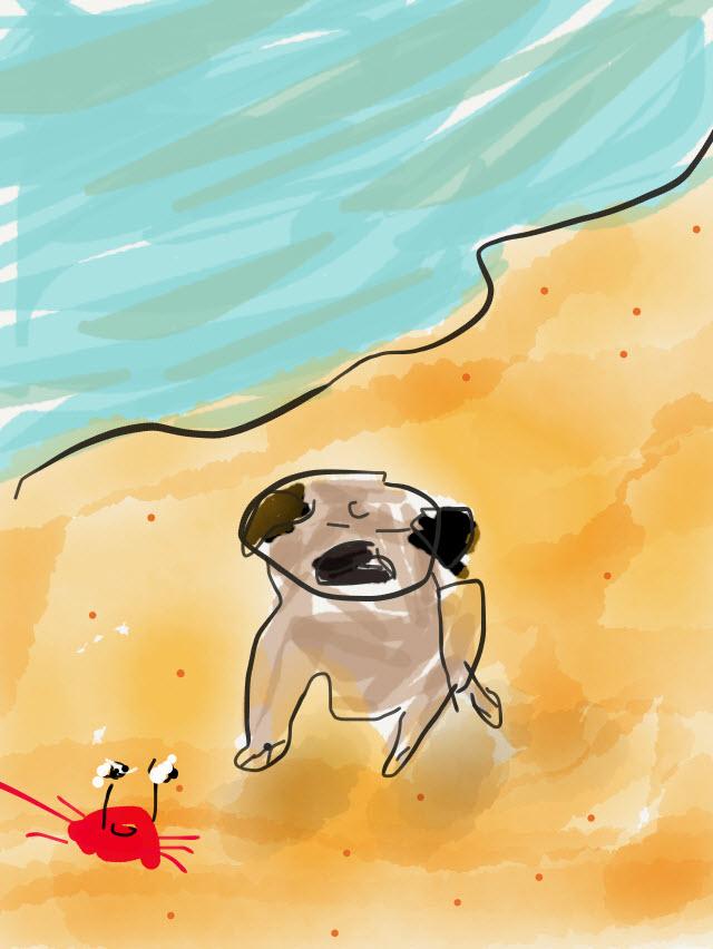 http://r20.rs6.net/tn.jsp?t=6i6jqq9ab.0.0.nbp9fkcab.0&id=preview&r=3&p=https://www.etsy.com/listing/279128804/pug-note-cards-pug-beach-be-a-pug-sponge